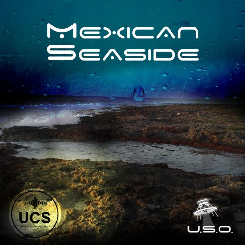 Unidentified Sound Object - Sound Effects Libraries - Sound Design - Matteo Milani - Mexican Seaside